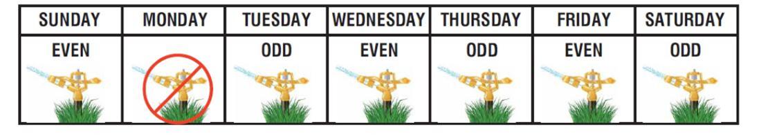 Irrigation Schedule Image