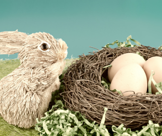 rabbits and eggs