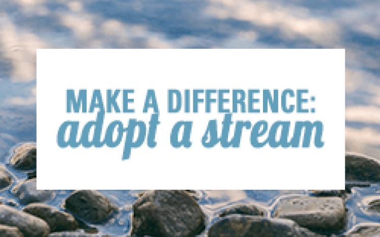 Adopt A Stream in Bondurant